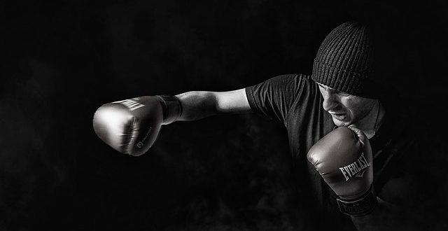 Boxen etabliert sich weiterhin als Trendsportart