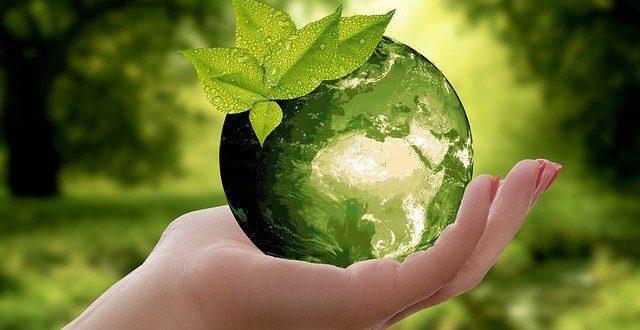 Welche Vorteile bieten ökologisch nachhaltige Produkte?